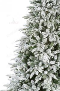 choinka pokryta śniegiem